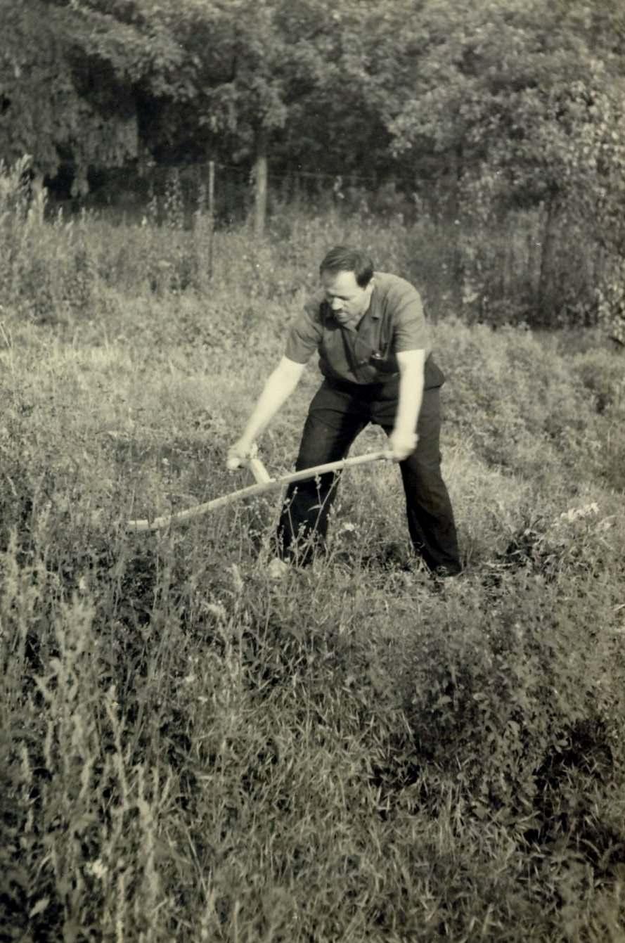 Popa Duumitru, La cositul fanului (Franta 1956) hp 2